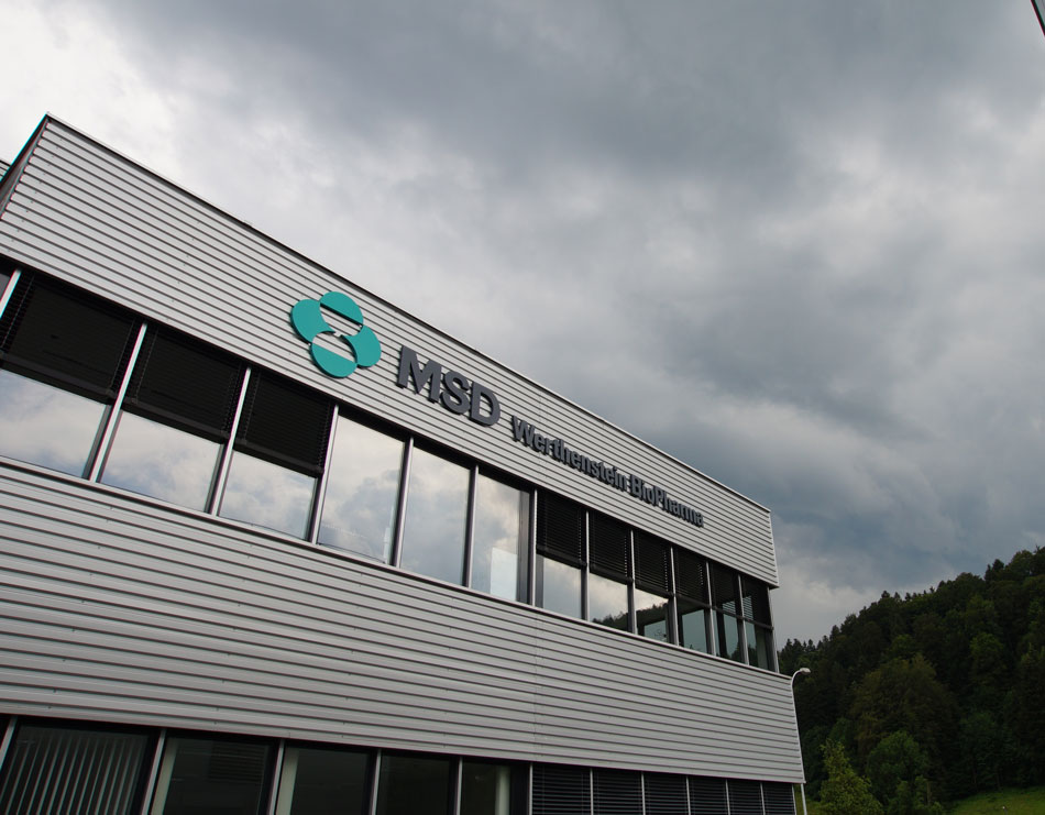 pharma-company-msd-ireland-announces-330-new-jobs-cork-carlow